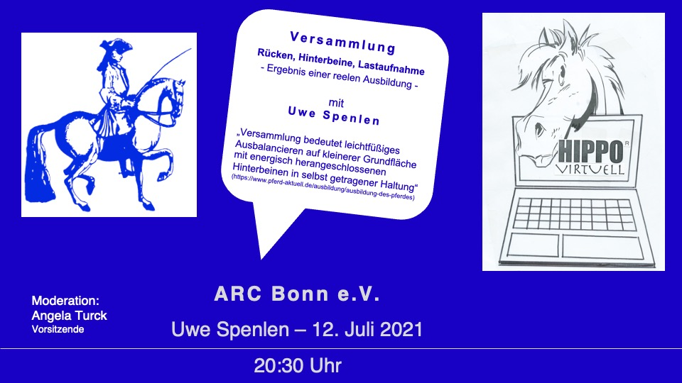 Read more about the article HIPPO virtuell — Versammlung am Montag, 12. Juli2021
